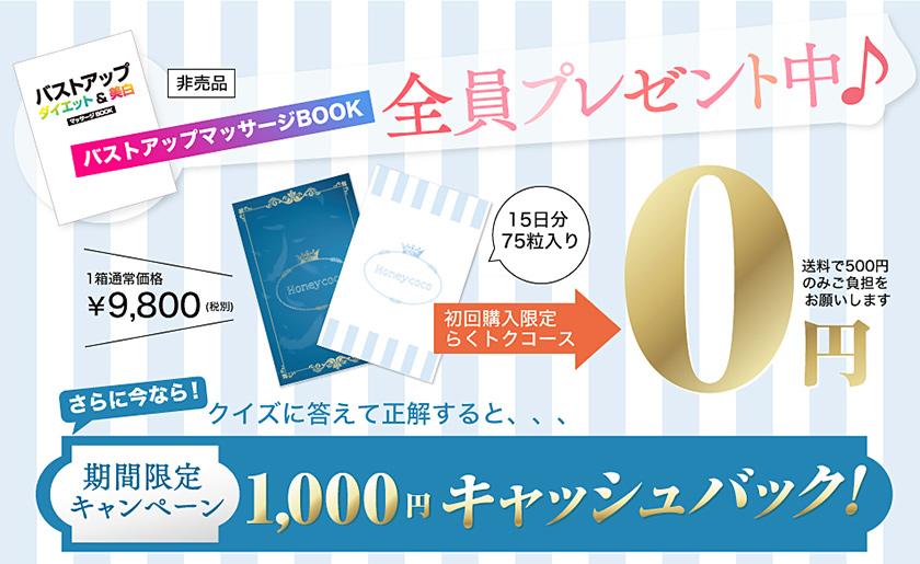 ハニーココのらくトクコースは0円で購入することができる!